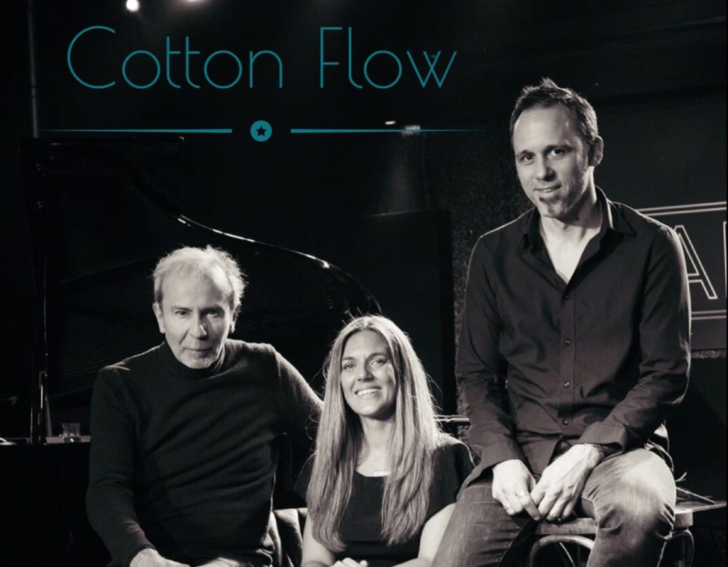 Concert Cotton Flow