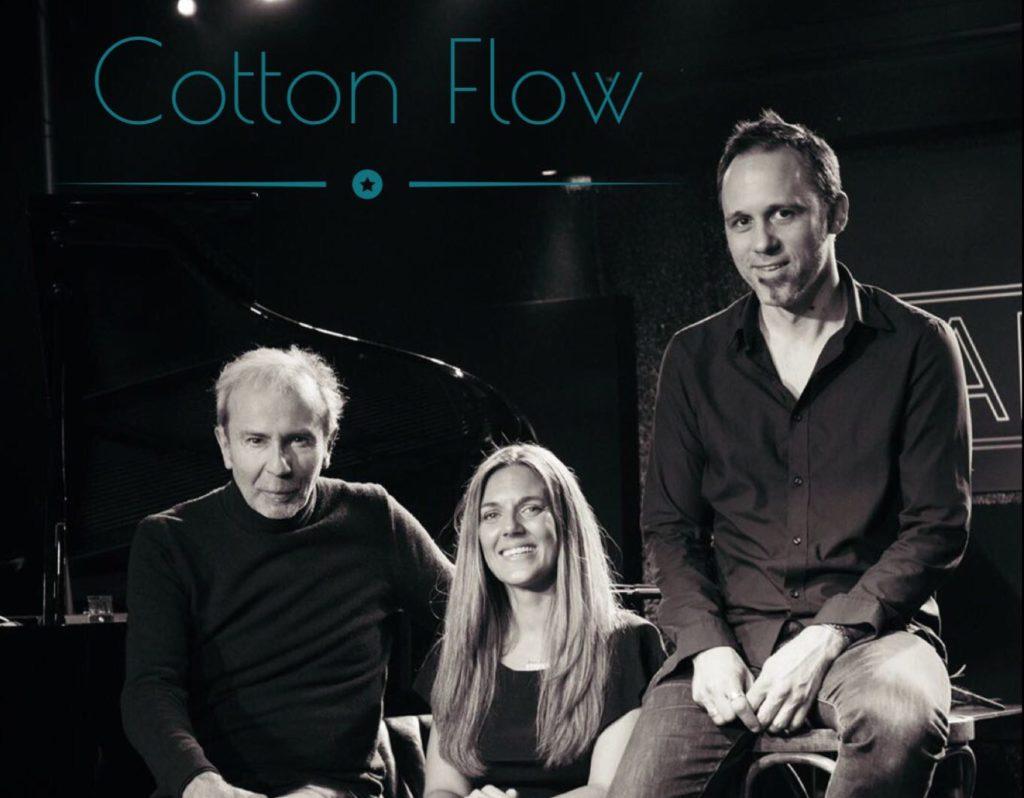 Concert Cotton Flow